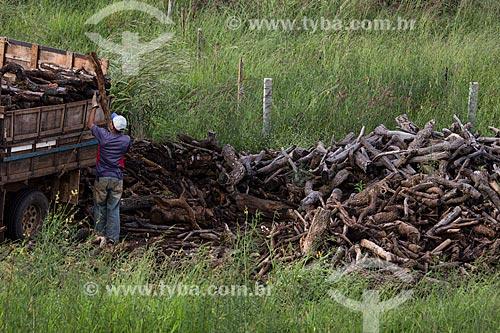 Homem carregamento caminhão com madeira para fazer carvão  - Anápolis - Goiás (GO) - Brasil