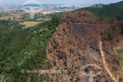 Foto aérea de vegetação queimada na Serra da Cantareira  - Guarulhos - São Paulo (SP) - Brasil