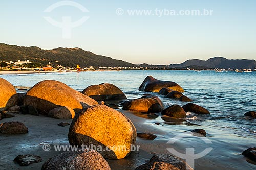 Rochas na orla da Praia de Ponta das Canas  - Florianópolis - Santa Catarina (SC) - Brasil