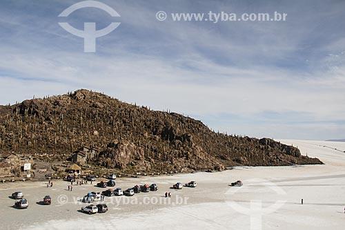 Isla Pescado (Ilha do Pescado) - também conhecida como Isla Incahuasi - no Salar de Uyuni  - Uyuni - Departamento Potosí - Bolívia