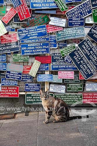 Gato com placas comemorativas na sala dos milagres da Paróquia São Judas Tadeu  - Rio de Janeiro - Rio de Janeiro (RJ) - Brasil