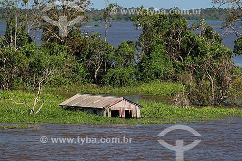 Casa às margens do Rio Amazonas próximo à Parintins durante a época de cheia  - Parintins - Amazonas (AM) - Brasil