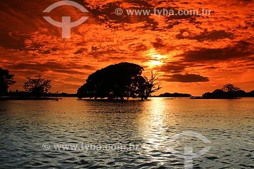 Pôr do sol no Rio Amazonas  - Parintins - Amazonas (AM) - Brasil