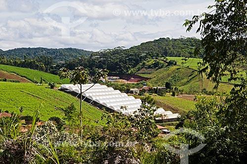 Estufa para criação de flores próximo à cidade de Venda Nova do Imigrante  - Venda Nova do Imigrante - Espírito Santo (ES) - Brasil