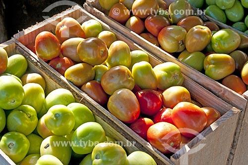 Caixas com Tomates Italianos separados e classificados por tamanho e maturidade  - São José de Ubá - Rio de Janeiro (RJ) - Brasil