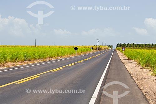 Rodovia AL-101 (Rodovia Governador Divaldo Suruagy) cortando plantação de cana de açúcar  - Coruripe - Alagoas (AL) - Brasil
