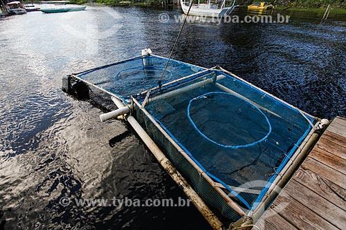 Criação de Ostras - Bar Flutuante - Povoado de Canavieiras  - Cairu - Bahia (BA) - Brasil