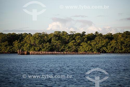 Curral de peixe no Rio do inferno  - Cairu - Bahia (BA) - Brasil