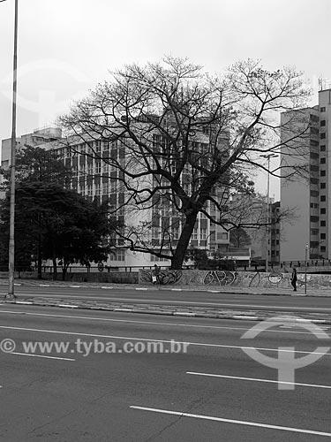 Rua da Consolação  - São Paulo - São Paulo (SP) - Brasil
