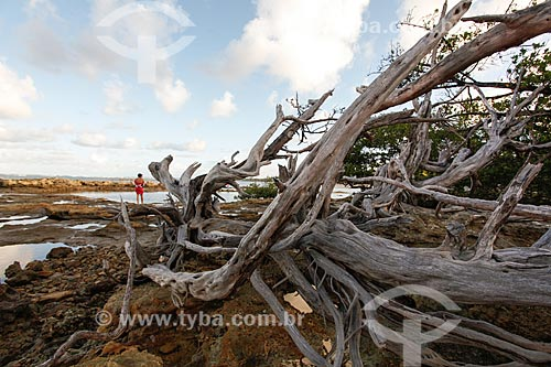 Divisa entre a 3ª e 4ª Praia durante a maré baixa  - Cairu - Bahia (BA) - Brasil