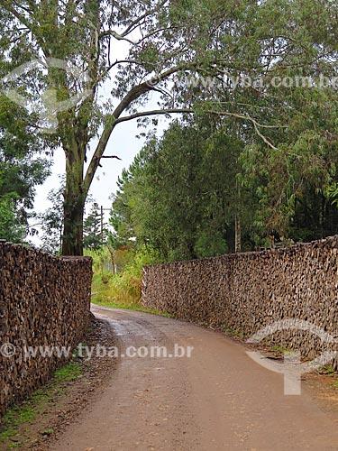 Estrada de terra com tronco de árvores empilhadas nas margens  - Gramado - Rio Grande do Sul (RS) - Brasil
