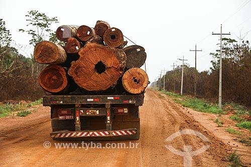Transporte de madeiras na Rodovia BR-319 - entre Manaus Humaitá  - Manaus - Amazonas (AM) - Brasil