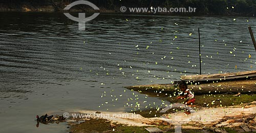 Criança ribeirinha às margens do Rio Igapó-Açu brincando com as borboletas  - Manaus - Amazonas (AM) - Brasil