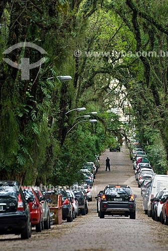 Vista geral da Rua Gonçalo de Carvalho - rua com um corredor de tipuanas, considerada patrimônio ambiental pela prefeitura de Porto Alegre  - Porto Alegre - Rio Grande do Sul (RS) - Brasil