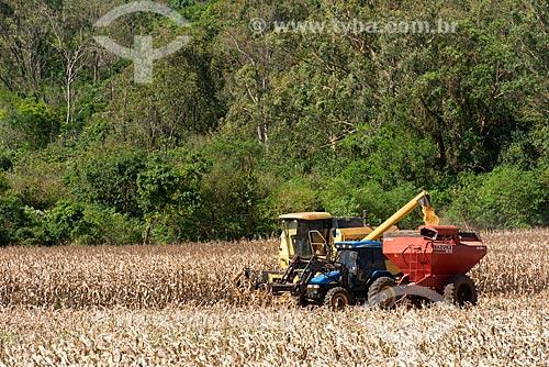 Colheita mecanizada de milho - com reserva legal de mata ao fundo  - Cornélio Procópio - Paraná (PR) - Brasil