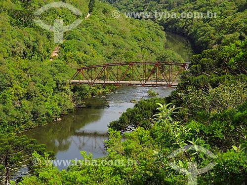 Vista geral da Ponte Passo do Inferno na Reserva Ecológica do Parque da Cachoeira  - Canela - Rio Grande do Sul (RS) - Brasil