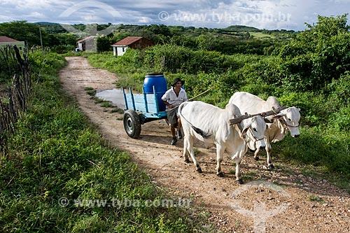 Homem transportando de água em carro de boi no sertão de pernambuco  - Tabira - Pernambuco (PE) - Brasil