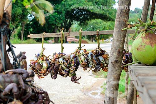 Caranguejos à venda às margens da Rodovia Governador Mário Covas (BR-101)  - Alagoas (AL) - Brasil