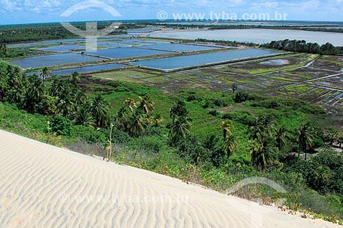 Criação de camarão (Carcinicultura) nas dunas Praia de Canoa Quebrada  - Aracati - Ceará (CE) - Brasil