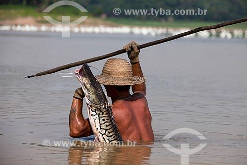 Ribeirinho pescando surubim-pintado (Pseudoplatystoma corruscans) - também conhecido como pintado - no Rio Amazonas  - Manaus - Amazonas (AM) - Brasil