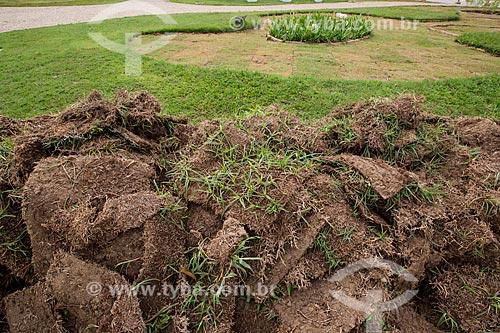 Plantio de grama às margens da Lagoa da Pampulha  - Belo Horizonte - Minas Gerais (MG) - Brasil