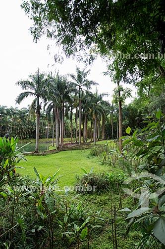 Jardim do Centro de Arte Contemporânea Inhotim (Instituto Inhotim)  - Brumadinho - Minas Gerais (MG) - Brasil
