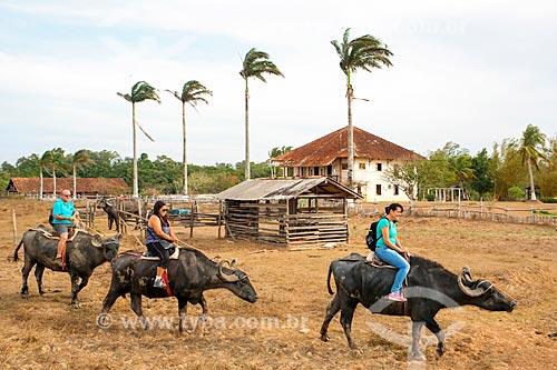 Turistas passeando no búfalo da Fazenda do Carmo  - Salvaterra - Pará (PA) - Brasil