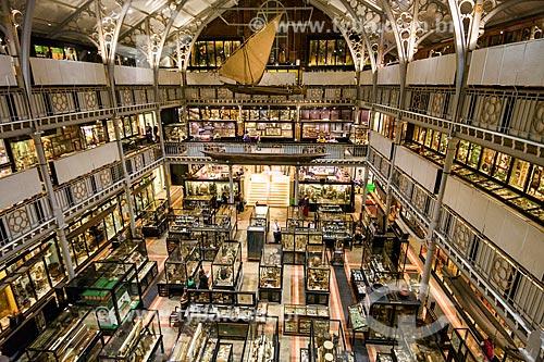 Interior do Museu Pitt Rivers na Universidade de Oxford  - Oxford - Condado de Oxfordshire - Inglaterra