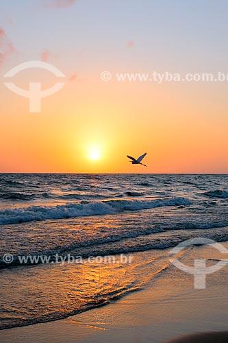 Vista do amanhecer na Praia de Joanes  - Salvaterra - Pará (PA) - Brasil