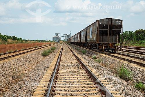 Trem da VLI Multimodal S.A. no Pátio Intermodal de Porto Nacional com a área de Transbordo Ferroviário de Grãos da Agrex do Brasil ao fundo  - Porto Nacional - Tocantins (TO) - Brasil