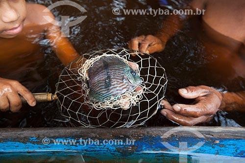 Detalhe de meninos ribeirinhos pescando Acará-Disco Hekel (Symphysodon discus) no Rio Negro  - Barcelos - Amazonas (AM) - Brasil
