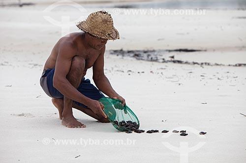 Filhote de tartarugas marinhas transportadas por ribeirinho para às margens do Rio Negro  - Barcelos - Amazonas (AM) - Brasil