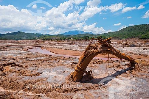 Vista geral de parte do distrito de Bento Rodrigues após o rompimento de barragem de rejeitos de mineração da empresa Samarco em Mariana (MG)  - Mariana - Minas Gerais (MG) - Brasil