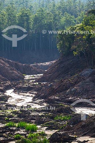 Afluente do Rio Gualaxo do Norte no distrito de Bento Rodrigues após o rompimento de barragem de rejeitos de mineração da empresa Samarco em Mariana (MG)  - Mariana - Minas Gerais (MG) - Brasil