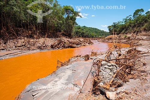 Rio Gualaxo do Norte no distrito de Monsenhor Horta após o rompimento de barragem de rejeitos de mineração da empresa Samarco em Mariana (MG)  - Mariana - Minas Gerais (MG) - Brasil