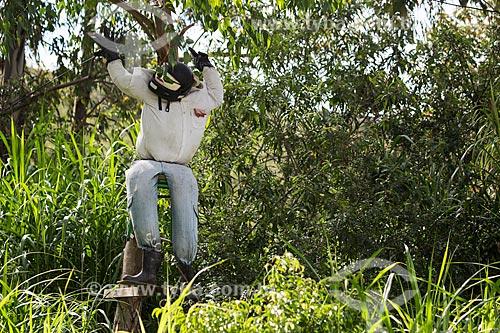 Espantalho com capacete em frente ao Sítio Nono  - Dores de Campos - Minas Gerais (MG) - Brasil