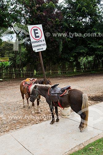 Cavalos amarrados em placa que diz: somente para charretes, início  - Tiradentes - Minas Gerais (MG) - Brasil