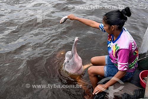 Instrutora do flutuante dos botos alimentando boto-cor-de-rosa (Inia geoffrensis) no Parque Nacional de Anavilhanas  - Novo Airão - Amazonas (AM) - Brasil