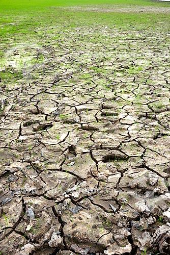Detalhe de solo rachado margens do Rio Negro na estação seca  - Manaus - Amazonas (AM) - Brasil