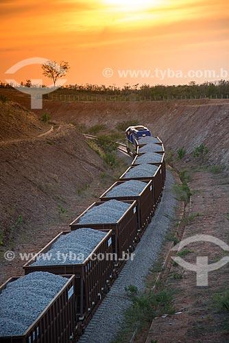 Trem carregado de brita na obra da Ferrovia Transnordestina  - Salgueiro - Pernambuco (PE) - Brasil
