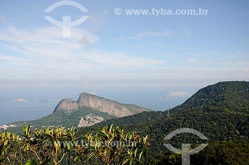 Vista geral a partir da trilha do Morro do Queimado com o Morro Dois Irmãos ao fundo  - Rio de Janeiro - Rio de Janeiro (RJ) - Brasil