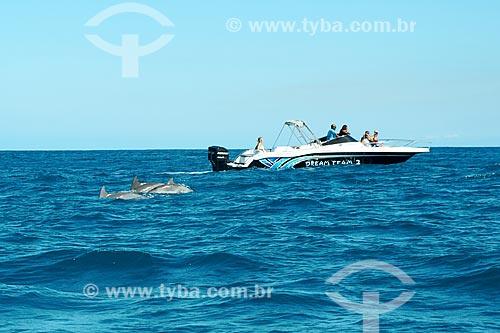 Golfinhos-nariz-de-garrafa (Tursiops truncatus) próximo à lancha no litoral de Maurício  - Maurício