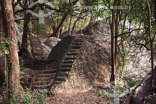 Trilha na floresta do antigo Monastério Pidurangala  - Sri Lanka