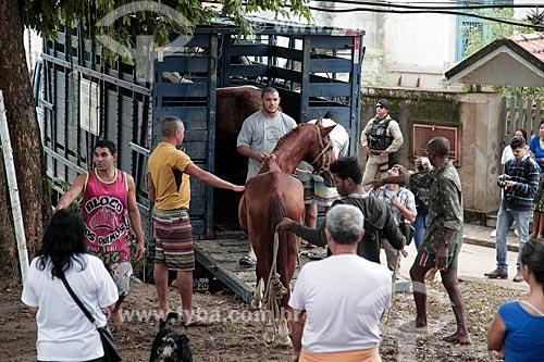 Embarque dos cavalos da Ilha de Paquetá após proibição de veículos de tração animal  - Rio de Janeiro - Rio de Janeiro (RJ) - Brasil