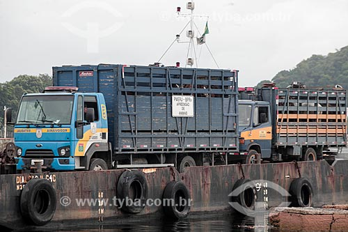 Transporte dos cavalos da Ilha de Paquetá após proibição de veículos de tração animal  - Rio de Janeiro - Rio de Janeiro (RJ) - Brasil