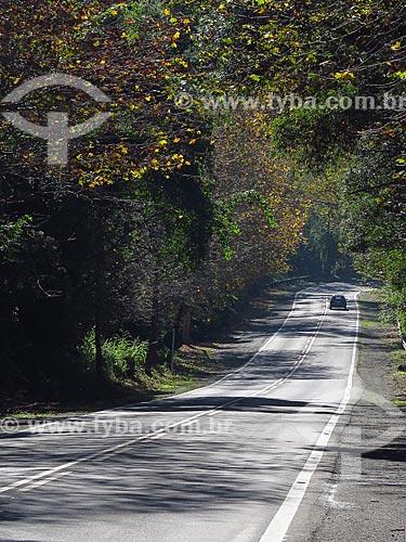 Trecho da Rota Romântica entre as cidade de Morro Reuter e Picada Café  - Morro Reuter - Rio Grande do Sul (RS) - Brasil