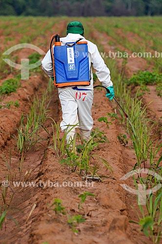Aplicação de defensivos em plantação de cana-de-açúcar  - Planalto - São Paulo (SP) - Brasil