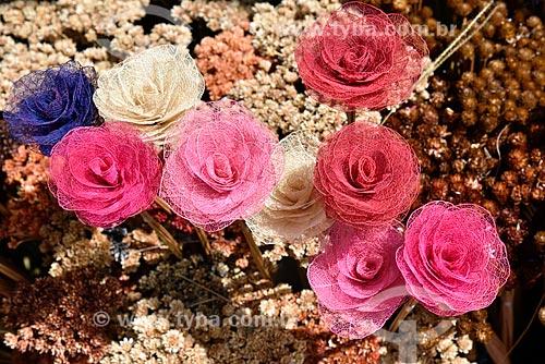 Venda de flores secas do Cerrado  - Brasília - Distrito Federal (DF) - Brasil