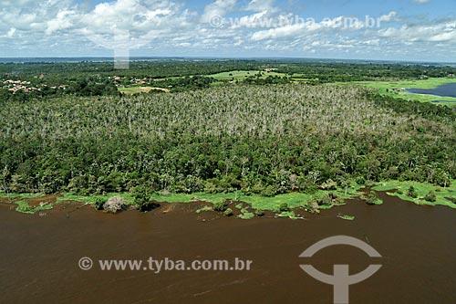 Vista de cima de igarapés do Rio Amazonas  - Parintins - Amazonas (AM) - Brasil