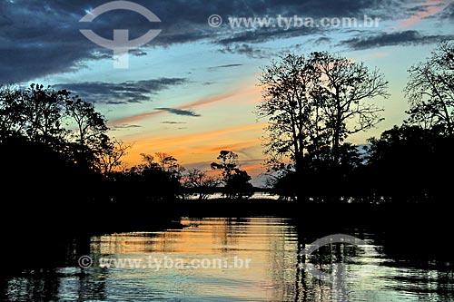Igapó do Rio Amazonas  - Parintins - Amazonas (AM) - Brasil